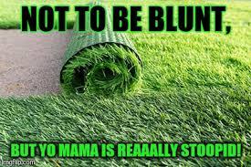 Landscaping Memes - yo mama imgflip