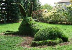 Abstract Topiary Design Phoenix Az