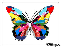 colourful butterfly picture 129755755 blingee com