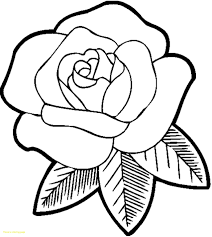 coloring pages with roses impressive coloring page of a rose pages roses flowers fresh with 3031