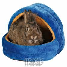 Rabbit Beds Resultado De Imagen Para Accesorios Para Conejos Domesticos