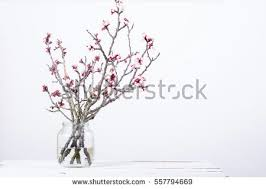 Peach Flowers Pink Blossoming Peach Flower Branches Simple Stock Photo 547324081