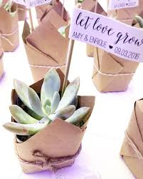 succulent wedding favors let grow succulent wedding favors dreamery events event