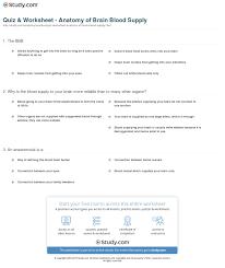 Anatomy And Physiology Of The Brain Quiz U0026 Worksheet Anatomy Of Brain Blood Supply Study Com
