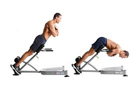 Back Extension Sit Up Bench Back Extension Machine Roman Chair Spinal Extensor Weight