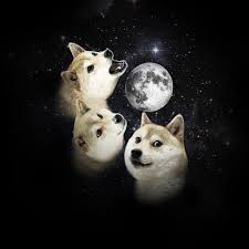 Three Wolf Shirt Meme - i heard shibes has the most wolf dna such howl supershibe