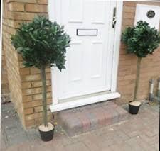 Laurel Topiary - artificial bay trees ebay