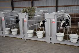 Calf Hutches For Sale A Year In Review Agri Plastics