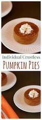Crustless Pumpkin Pie by Best 25 Recipe For Custard Ideas On Pinterest Baked Custard