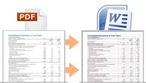 extract data from pdf by converting it into word format
