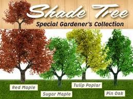premier shade trees buy 1 tree get 3 free as seen on tv