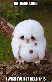 Oh Dear Lord Meme - oh dear lord i wish i ve not read this sad owl make a meme