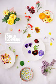 edible flowers d e s i g n l o v e f e s t cake with edible flowers
