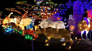 Zoo Lights Houston Hours by Family Friendly Last Chance Before The Lights Go Out Houston
