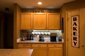 Linkable Under Cabinet Lighting by Amazon Com Radiance Flexible Light Strip 16 Ft Daylight White