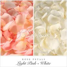 where to buy petals petals pink white ebloomsdirect where to buy bulk