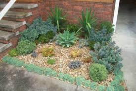 19 outdoor cactus garden planter ideas succulent container garden