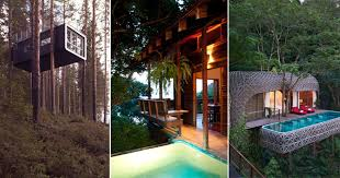 best tree house hotels in the world been revealed metro news