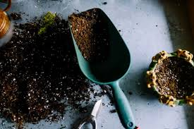fertilizer for vegetable gardens lowes explained