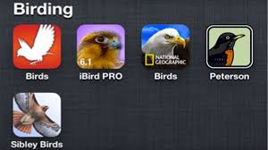 boucher u0027s birding blog apps for the smart birder u2014 which one