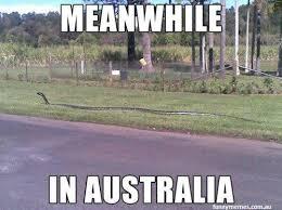 Australian Meme - when australia humor and memes
