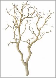 decorative branches with lights 91 decorative sticks for the home decorative bamboo sticks home
