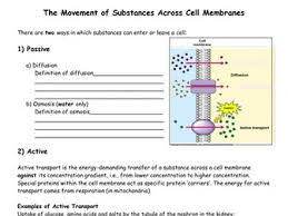 the movement of substances across cell membranes worksheet by