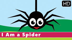 i am a spider fun facts for kids animation nursery rhyme for