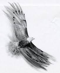 pinterest u0027te 25 u0027ten fazla çok konuşulan small eagle tattoo fikri