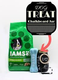 pet gift baskets new pet gift basket with dog treats jar deux