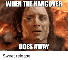 Hungover Meme - when the hangover goes away the hangover meme on me me