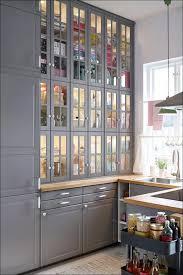 Ikea Small Kitchen Design Ideas by Kitchen Ikea Storage Cabinets With Doors Ikea Small Kitchen Ikea