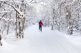 top 10 places to cross country ski in the mitten state skis com blog
