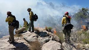 Wildfire Williams Arizona by Az Ex Cons Will Soon Have Chance To Become Full Time Firefighter