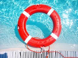 dog paddle u201d or drowning sean paul insurance agency u2013 home and