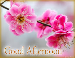 free greetings afternoon free images gifs greetings