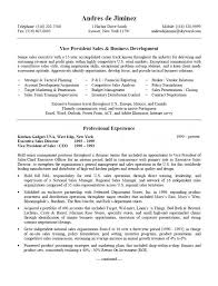 Best Canadian Resumes by Sales U0026 Business Development Resume