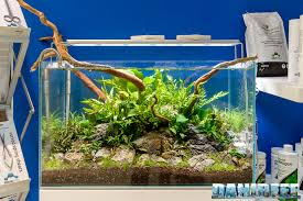 Aquascape Reef Zoomark 2017 Sdc Pumps At Sicce And Seachem Booth Reefs Com