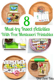 8 must try insect activities with free montessori inspired printables
