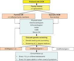 dilated cardiomyopathy circulation research