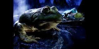 bud light commercial 2017 the budweiser frogs are back with new friends and a new favorite