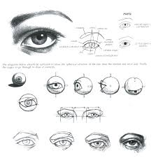 How To Draw Female Anatomy How To Draw Female Eyes Step By Step Online Drawing Lessons