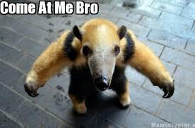 Come At Me Bro Meme Generator - meme creator come at me bro meme generator at memecreator org