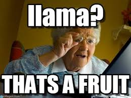 Grandma Finds The Internet Meme - llama grandma finds the internet meme on memegen