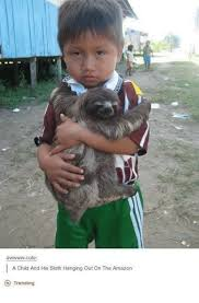 Cute Sloth Meme - awwwwww cute a child and his sloth hanging out on the