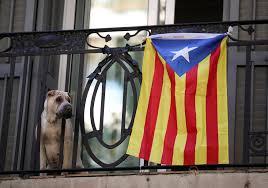Estelada Flag Spanien Will Unabhängigkeit Kataloniens Verhindern