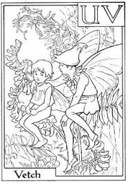 flower fairies coloring pages fairies coloring preschool
