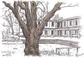 tree u2013 petescully
