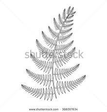 zentangle male fern tattoo boho hipster stock illustration