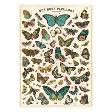 designer wrapping paper butterfly chart luxury wrapping paper national gallery shop